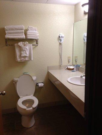 Mackinaw Beach and Bay - Inn & Suites: Bathroom