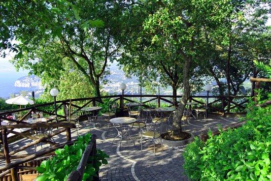 Hotel Prestige Sorrento: The grounds