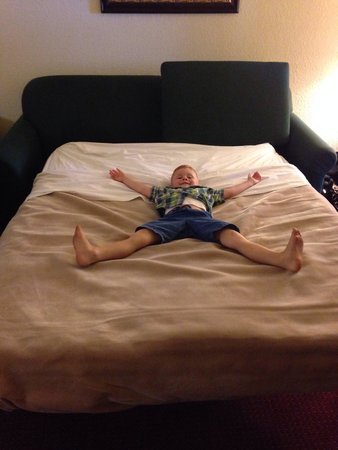 Mackinaw Beach and Bay - Inn & Suites: Pull out queen size sofa (he's 4)