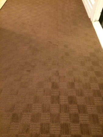 Hotel Le Cantlie Suites : Very old carpets inside the rooms