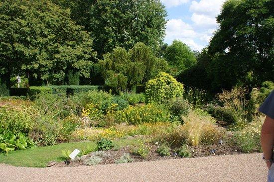 Winterbourne House and Garden: Winterbourne Garden