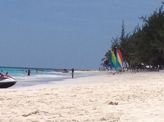 Bougainvillea Beach Resort: paradise!