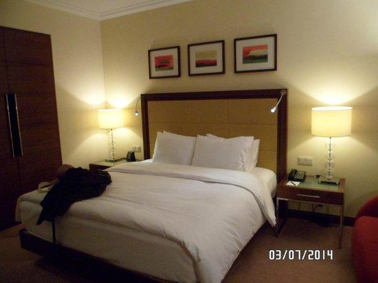 Hilton Warsaw Hotel & Convention Centre: Habitación