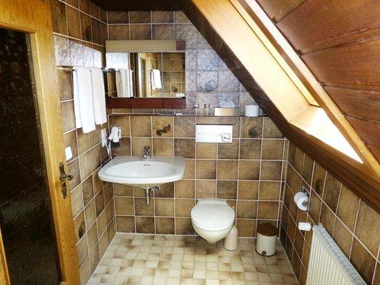 Landhaus Hirschberg: Bath in room 13