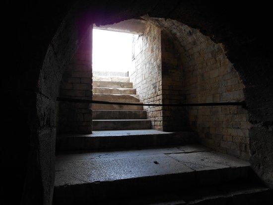Arènes de Nîmes : Graceful archways are abundant.