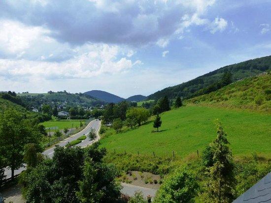 Landhaus Hirschberg: View from Room 13 toward town