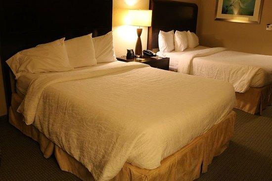 Hilton Garden Inn Atlanta Downtown: 2 Queen Beds