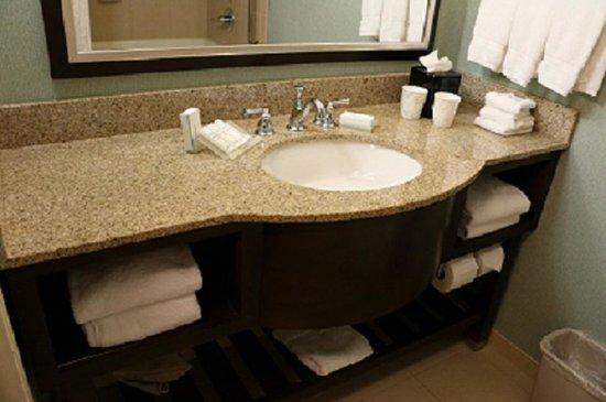 Hilton Garden Inn Atlanta Downtown: Bathroom Sink Area