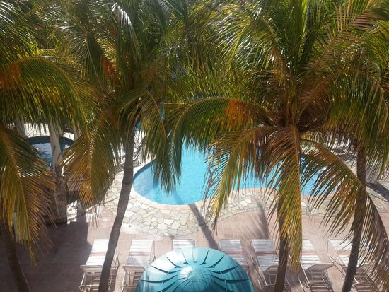 Caribbean Palm Village Resort: Scene from our room - Beautiful