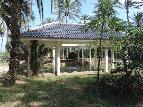 Parque El Palmeral: palmeral
