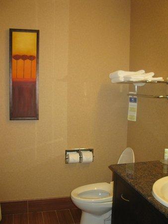 Quality Inn & Suites Levis: bathroom