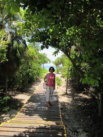 Melia Cayo Coco: Por la pasarela a la playa.-