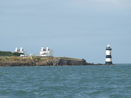 Seacoast Safaris: a view from the boat