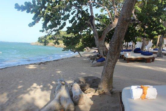 Cofresi Palm Beach & Spa Resort : The Beach - Serenity