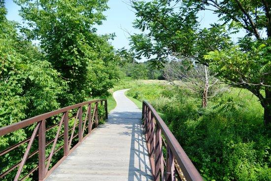 Stowe Recreation Path: walking bridge