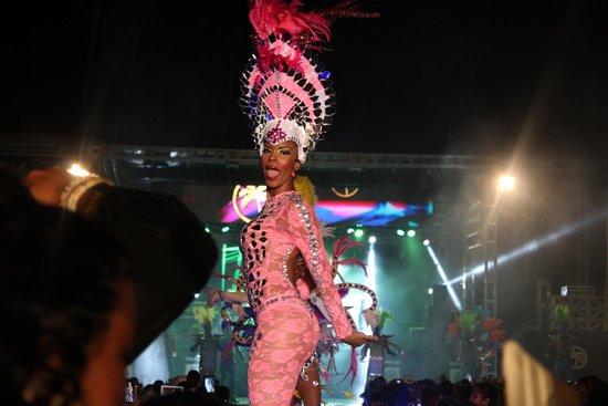 Cofresi Palm Beach & Spa Resort : Entertainment