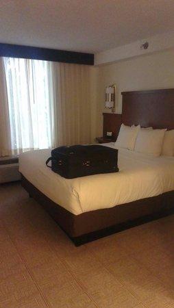 Hyatt Place Nashville/Opryland : King suite room 427
