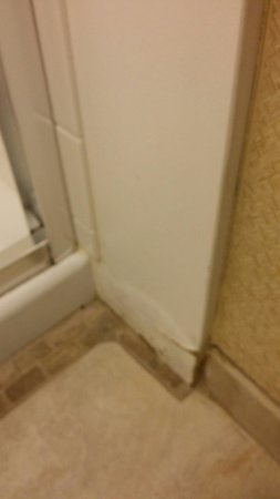 Embassy Suites by Hilton Phoenix Airport : Well worn