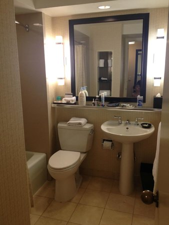 Hyatt Regency Washington on Capitol Hill: Bathroom