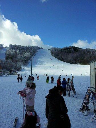 Sugadaira Kogen Ski Area : スキー場