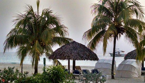 Beaches Negril Resort & Spa : beautiful!