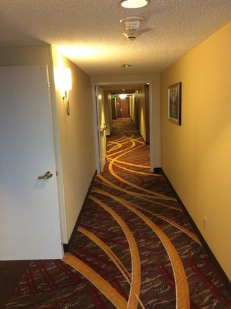 San Francisco Marriott Marquis: Halls. Long and confusing layout.