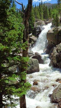 Alberta Falls: The Falls