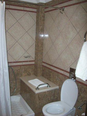 Centrotel Hotel: Bathroom