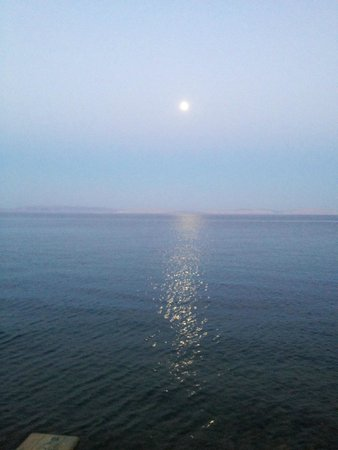 Forsha's Egyptian Kitchen: Moonlight over Dahab from roof top seating at Forsha's