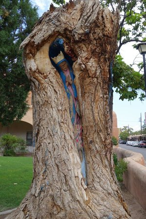 ABQ Trolley Co. : Tree in font of the church, used to he called tree behind the church before it was moved. Photo