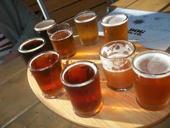 Sea Dog Brewery: sampler