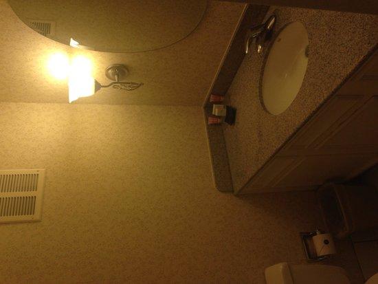 Flamingo Las Vegas Hotel & Casino: FAB Bathroom 2