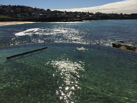Bondi to Coogee Beach Coastal Walk: Best pool I've ever seen