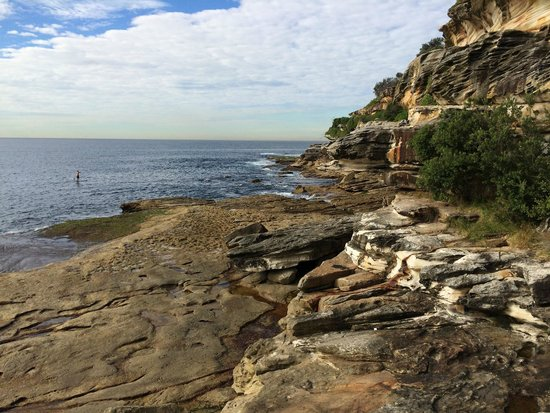 Bondi to Coogee Beach Coastal Walk: Cliffs