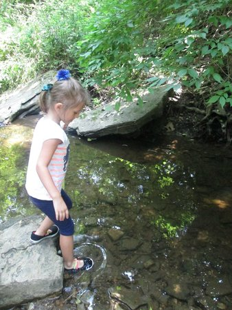 Shaker Village of Pleasant Hill: feet in the shawnee run creek