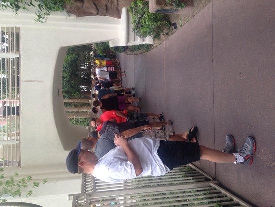 Flamingo Las Vegas Hotel & Casino: GO Pool line before 8 AM