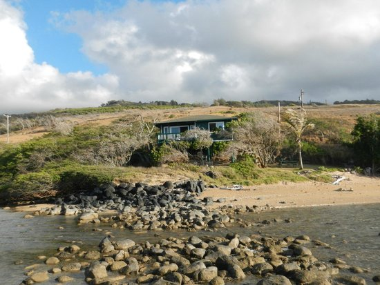 Dunbar Beachfront Cottages: Dubar from out on the rocks