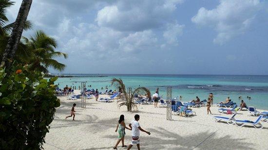 Viva Wyndham Dominicus Beach: Spaggia del villaggio