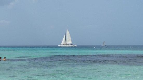 Viva Wyndham Dominicus Beach: Paorama dalla spiaggia
