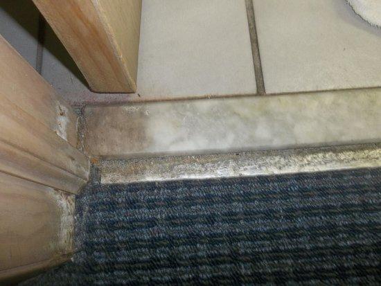 Bermuda Sands Motel: Floor leading into bathroom