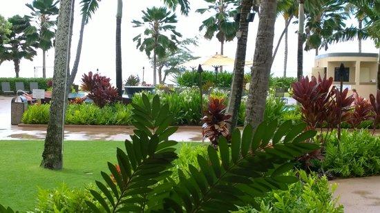 Courtyard Kaua'i at Coconut Beach : Pool Area
