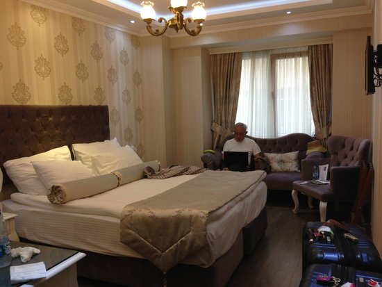 World Heritage Hotel Istanbul: hotel rm
