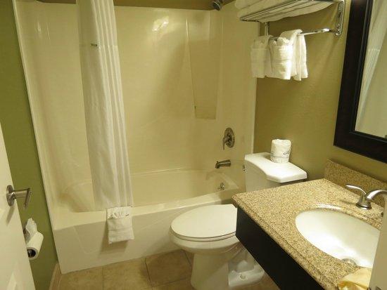 Super 8 Montrose : bathroom