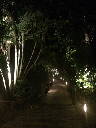 Tween Waters Inn Island Resort & Spa: Walkway at Night