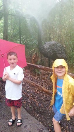 Dallas Zoo: Fun rain or shine!