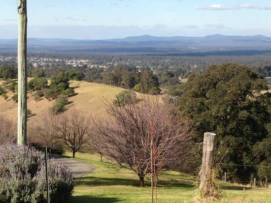 Hunter Valley: Picture just of country side from the mountain