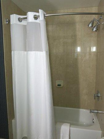 Kinzie Hotel: Shower