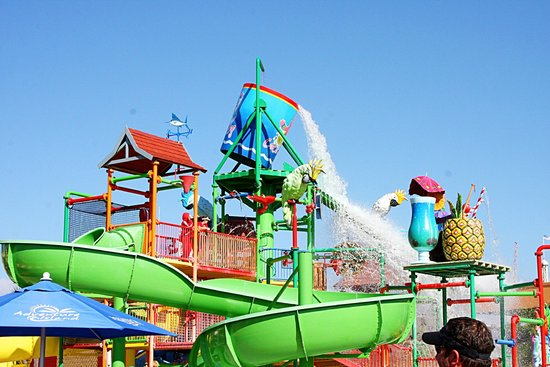 Coco Key Hotel and Water Park Resort : Slides