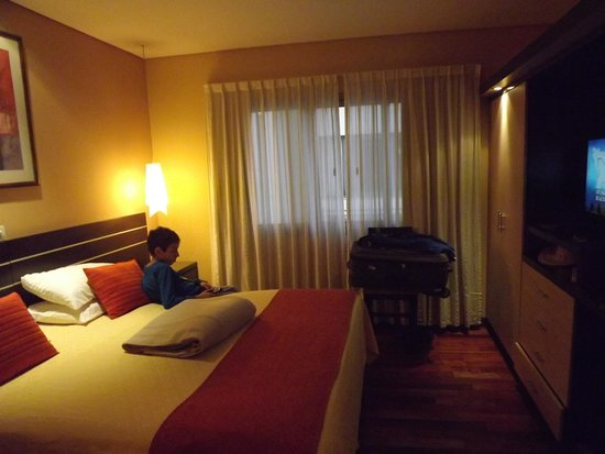 Ankara Suites: Habitacion principal