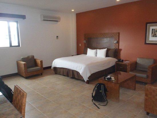Hotel Presidente: King Room